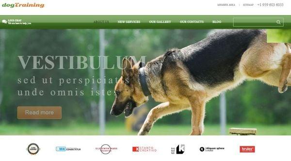 Dog – Bootstrap Pet Food Store WordPress Theme