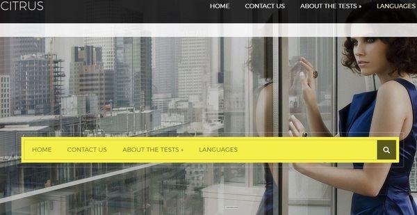 Citrus – Shortcodes Ready WordPress Theme