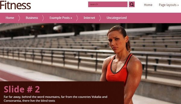Fitness -WooCommerce Supported WordPress Theme