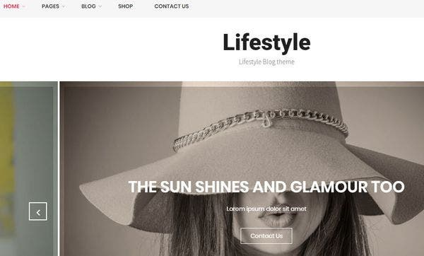 Lifestyle – Highly Responsive WordPress Theme