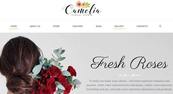 Camelia: Mobile-device optimized WordPress Theme