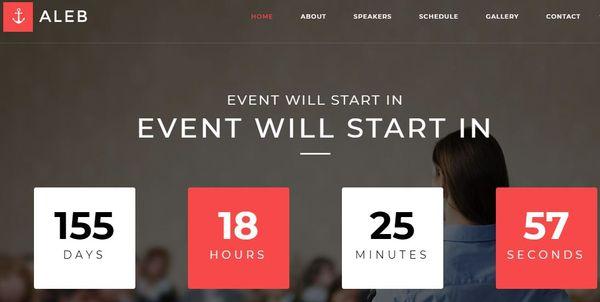 Aleb – MailChimp Integrated WordPress Theme