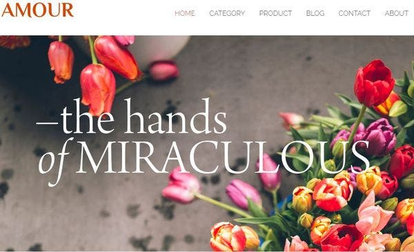 Amour: Minimalist WordPress Theme
