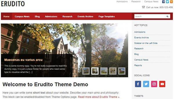 Erudito – Responsive WordPress Theme