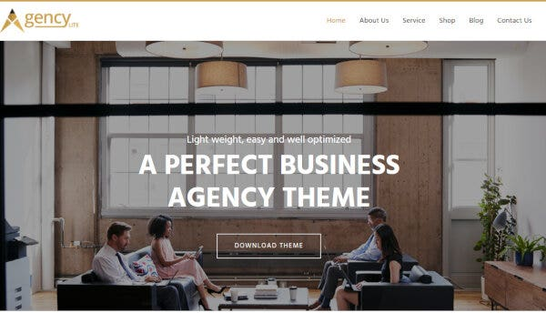 Agency Lite- Fully SEO Optimized WordPress Theme
