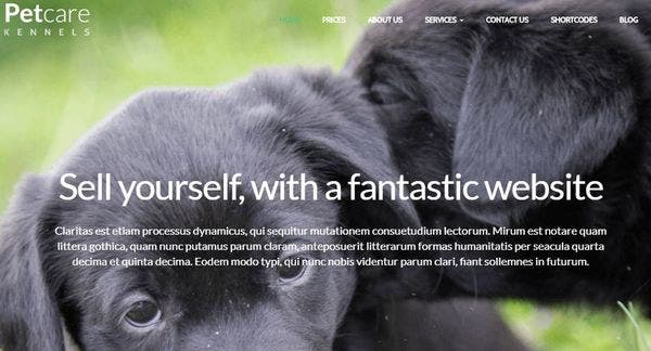 PetCare Dog Kennels – Bootstrap 1170px Width WordPress theme