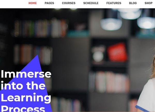 Learnpro – Drag-And-Drop WordPress Theme