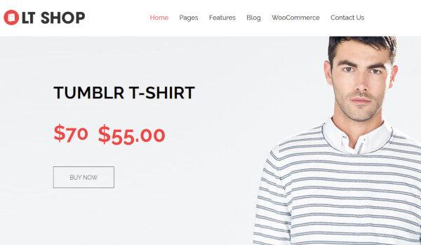 LT SHOP – Payment method Integrated WordPress Theme