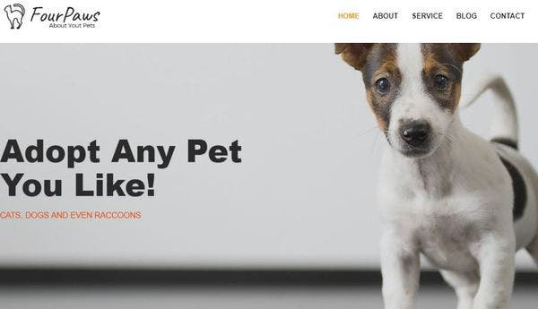 Four Paws – Elementor Page Builder WordPress theme