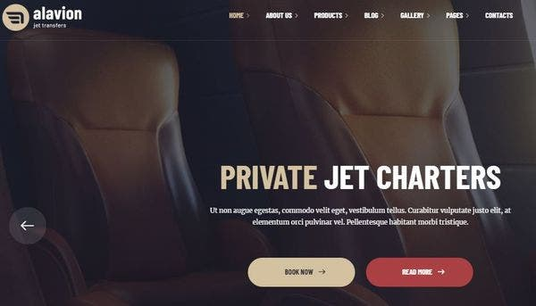 https://creativemarket.com/webnesters/101491-Yatra-Travel-Booking-Wordpress-Theme