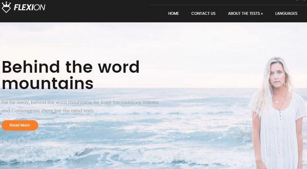 Flexion - Ecwid Supported WordPress Theme
