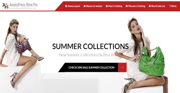 accessstore premium clothing template