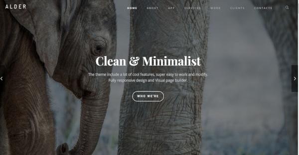 Alder - MegaMenu Integrated WordPress Theme