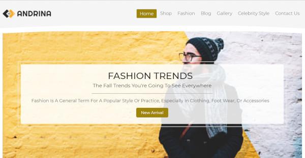 Andrina – Custom WordPress Theme