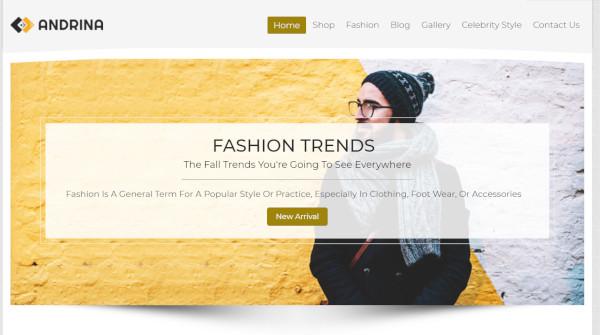 andrina – seo optimized wordpress theme