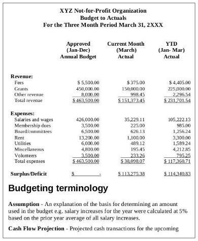 annual non profit budget