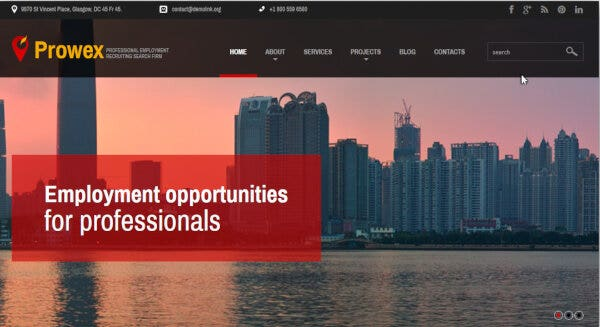 Professional Employment – SEO Friendly WordPress Theme