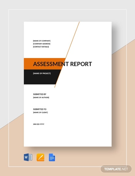 assessment report 6