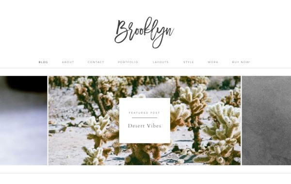 brooklyn – highly responsive wordpress theme