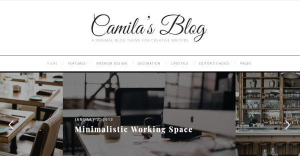 camila – mobile friendly wordpress theme1