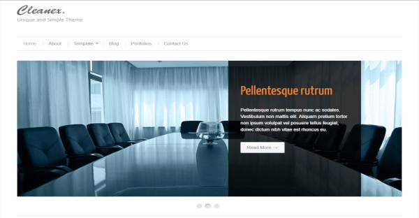 Cleanex - Retina Ready WordPress Theme