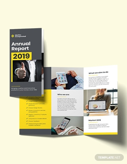 company annual report tri fold brochure