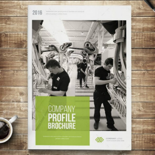 company profile annual report brochure