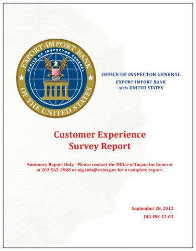 customer experience survey report
