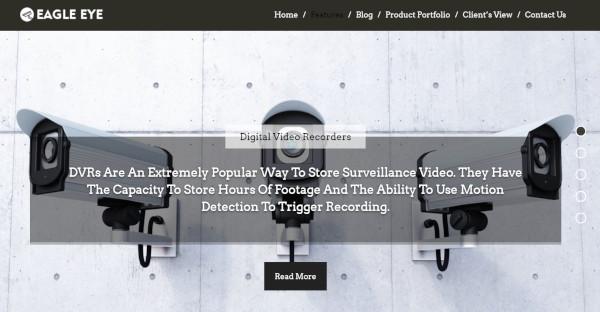 Eagle Eye – Parallax WordPress Theme