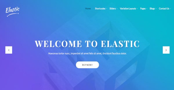 Elastic Pro – Custom WordPress Theme
