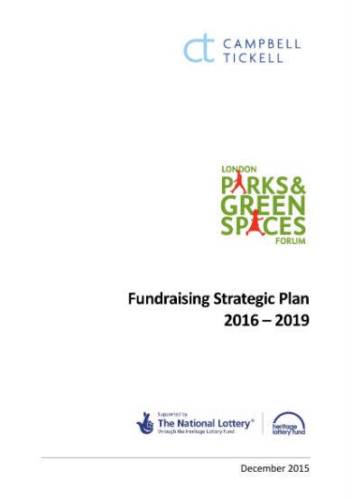 fundraising strategy revised final confidential 01