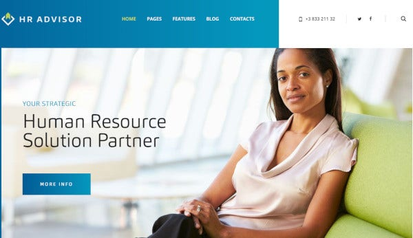 hr-advisor-wpml-plugin-wordpress-theme