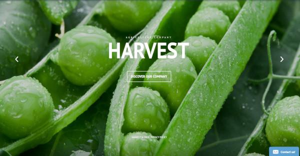 Harvest - Customizable WordPress Theme