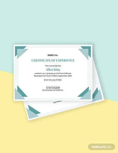 it experience certificate template