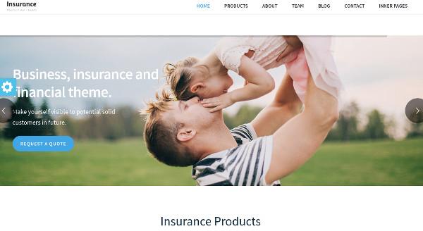 insurance-agency-extensive-documentation-wordpress-theme