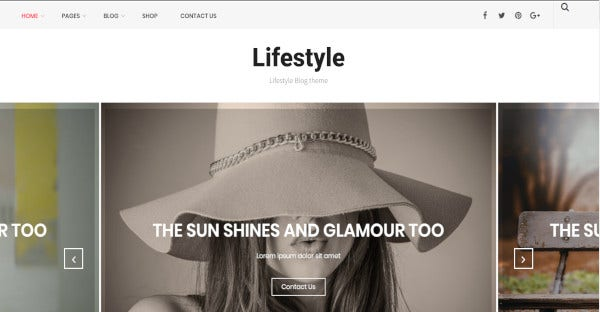 Lifestyle - Powerful Admin Panel WordPress Theme
