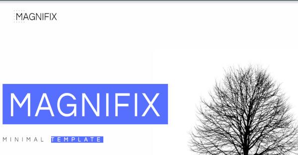 Magnifix-