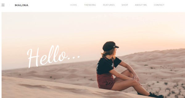 malina gutenberg editor wordpress theme