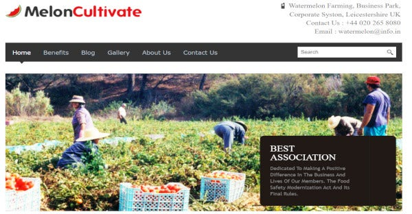 melon cultivate – responsive wordpress theme
