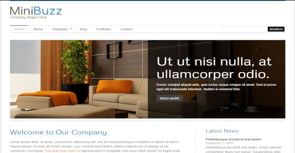 MiniBuzz - Retina Displays WordPress Theme