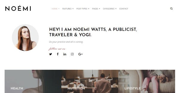 noemi-mailchimp-support-wordpress-theme