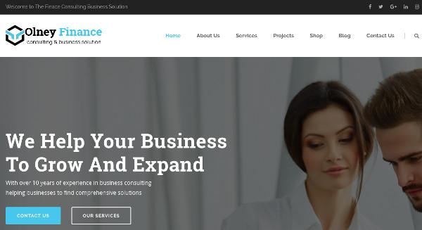 olney-finance-responsive-wordpress-themes