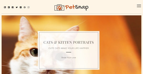 petsnap multi browser compatible wordpress theme