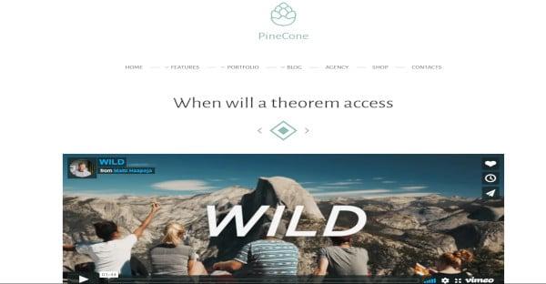 pinecone – seo friendly wordpress theme