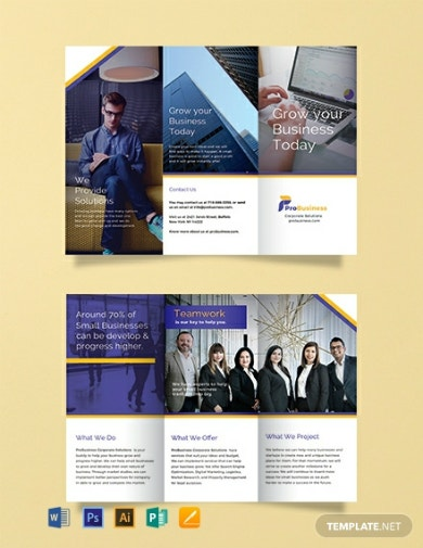 professional business tri fold brochure example