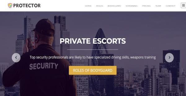 Protector – Social Media Easy WordPress Theme