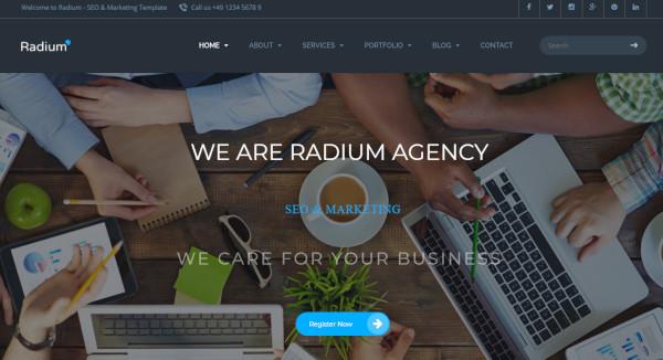 radium best seo agency wordpress theme