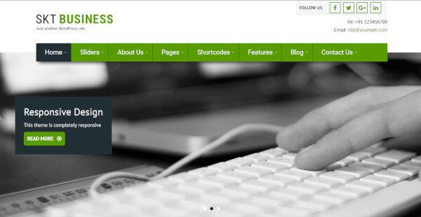 Bizness Pro – Widget Friendly Coding Supported WordPress Theme