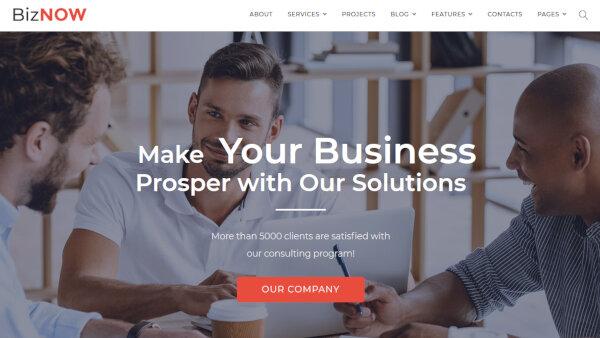 Biznow – SEO-friendly WordPress Theme