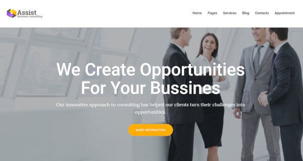 18. Assist – Financial Audit WordPress Theme